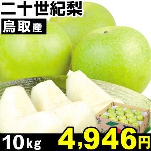 梨 鳥取産 二十世紀梨 10kg 1箱|kokkaen