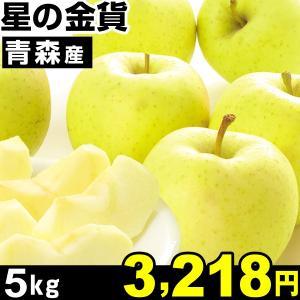リンゴ 青森産 星の金貨 5kg 1箱|kokkaen
