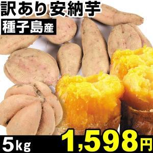 安納芋 種子島産 訳あり安納芋 5kg 1組 中園ファーム|kokkaen