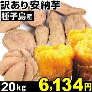 安納芋 種子島産 訳あり安納芋 20kg 1組 中園ファーム|kokkaen