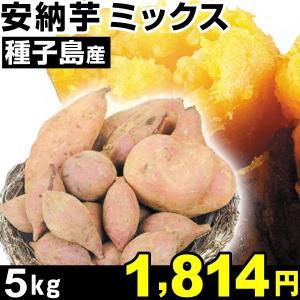 安納芋 種子島産 安納芋ミックス 5kg 1組 中園ファーム|kokkaen