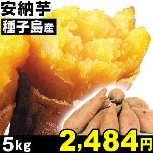 安納芋 種子島産 安納芋 5kg 1組 中園ファーム|kokkaen