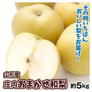 梨 山形産 ご家庭用 庄内おまかせ赤梨 5kg 1箱 送料無料 和梨 品種おまかせ 幸水 豊水|kokkaen
