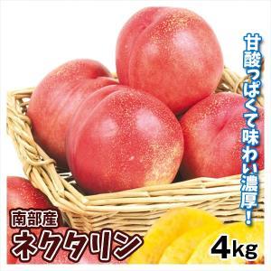 桃 青森南部町産 ネクタリン 4kg 1箱 送料無料 ズバイモモ 桃の仲間 爽やかな酸味|kokkaen