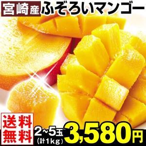 マンゴー 【超買得】宮崎産 ふぞろいアップルマンゴー 1kg 1組 送料無料 2〜5玉 訳あり ご家庭用 太陽のタマゴと同じ品種 《ネット限定》|kokkaen