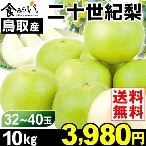 梨 【お買得】鳥取産 二十世紀梨 10kg 1箱 送料無料 ご家庭用 訳あり 和梨 kokkaen