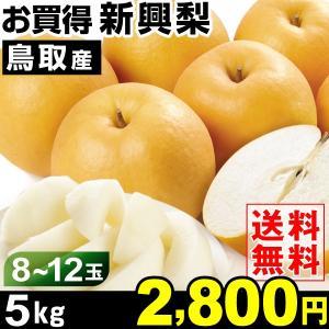 梨 【お買得】鳥取産 新興梨 5kg 1箱 送料無料 ご家庭用 和梨|kokkaen