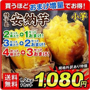 安納芋 小芋(1.2kg)種子島産 安納芋 送料無料+2セット以上でおまけ付 ご家庭用 さつまいも 蜜芋 極甘蜜芋 中園ファーム 増量特典 国華園|kokkaen