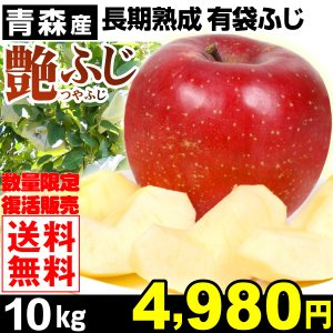 りんご 青森産 艶ふじ(つやふじ)10kg 1箱 送料無料 有袋ふじ 数量限定 長期熟成りんご ご家庭用|kokkaen