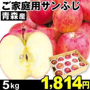 りんご 青森産 ご家庭用 サンふじ 5kg1組  食品|kokkaen