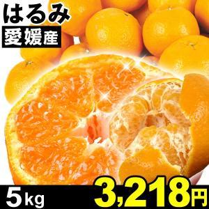 みかん 愛媛産 はるみ 5kg1箱 食品|kokkaen