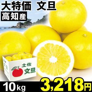 みかん 大特価 高知産 文旦 10kg1箱 ご家庭用 ぶんたん 食品|kokkaen