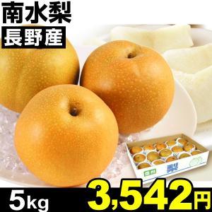 梨 長野産 南水梨 5kg1箱 ご家庭用 食品|kokkaen