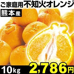 みかん 熊本産 ご家庭用 不知火オレンジ 10kg1箱 食品 kokkaen