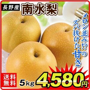 梨 長野産 南水梨(5kg)8〜18玉 ご家庭用 なんすい 希少品種 なし 和梨 果物 フルーツ 国華園|kokkaen