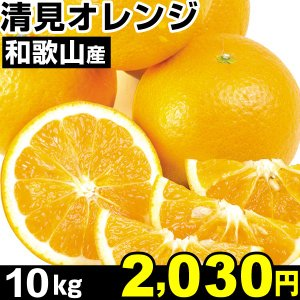 みかん 和歌山産 清見オレンジ 10kg1箱  食品|kokkaen