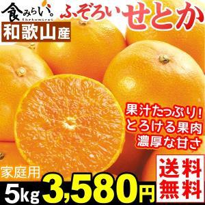 みかん 和歌山産 ご家庭用 せとか 5kg1箱 みかんの大トロ 食品|kokkaen
