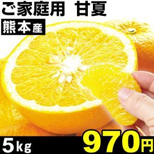 みかん 熊本産 ご家庭用 甘夏 5kg1箱 あまなつ 食品|kokkaen