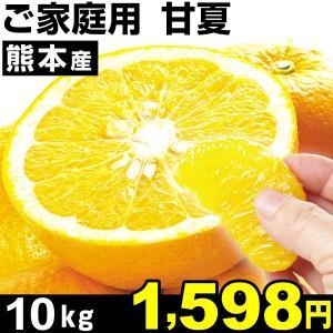 みかん 熊本産 ご家庭用 甘夏 10kg1箱 あまなつ 食品|kokkaen