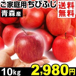リンゴ 青森産 ご家庭用 ちびふじ 10kg1箱 送料無料 ...