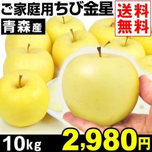 リンゴ 青森産 ご家庭用 ちび金星 10kg1箱 送料無料 特別版|kokkaen