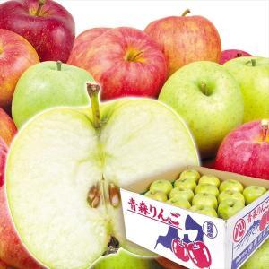 リンゴ 青森産 ご家庭用 おまかせ青りんご 10kg1箱 送料無料 特別版|kokkaen