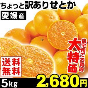 みかん 愛媛産 ちょっと訳ありせとか 5kg1組 ご家庭用 送料無料 特別版|kokkaen