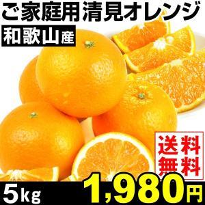 みかん 和歌山産 ご家庭用 清見オレンジ 5kg1箱 ご家庭用 送料無料 特別版 kokkaen