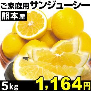 みかん 熊本産 ご家庭用 サンジューシー 5kg1箱 河内晩柑 食品|kokkaen
