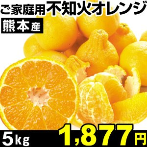 みかん 熊本産 ご家庭用 不知火オレンジ 5kg1箱 食品|kokkaen