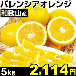 みかん 和歌山産 バレンシアオレンジ 5kg1箱 食品|kokkaen