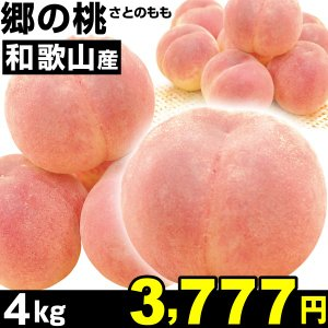 桃 和歌山産 郷の桃 4kg1組 ご家庭用 食品|kokkaen
