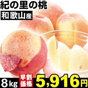 桃 【早割価格】和歌山産 紀の里の桃 8kg1組 食品|kokkaen