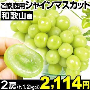 ぶどう 和歌山産 ご家庭用 シャインマスカット 2房1組 食...