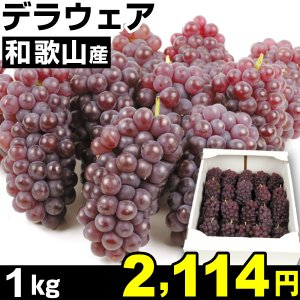 ぶどう 和歌山産 ご家庭用 デラウェア 1kg1組 食品|kokkaen