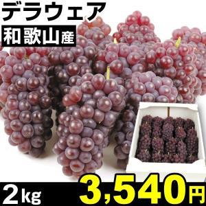 ぶどう 和歌山産 ご家庭用 デラウェア 2kg1組 食品|kokkaen