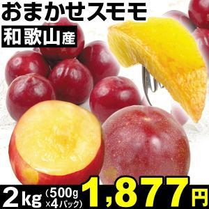 すもも 和歌山産 おまかせスモモ 2kg1組 食品|kokkaen