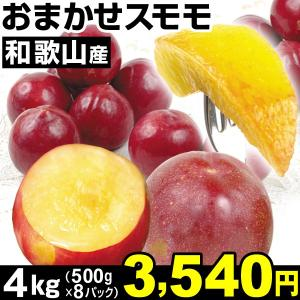 すもも 和歌山産 おまかせスモモ 4kg1組 食品|kokkaen