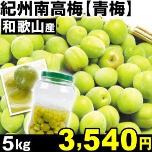 生梅 和歌山産 紀州南高梅・青梅 5kg1箱 うめ 冷蔵 食品 kokkaen