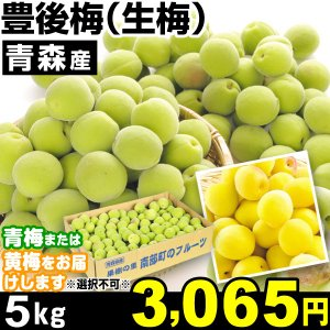 生梅 青森産 生梅・豊後梅 5kg1組 うめ 冷蔵 食品 kokkaen