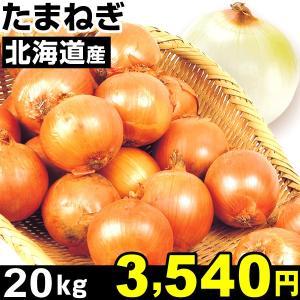 玉ねぎ 北海道産 たまねぎ 20kg1箱 食品|kokkaen