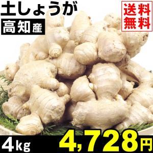 生姜 高知産 土しょうが 4kg1組 食品|kokkaen