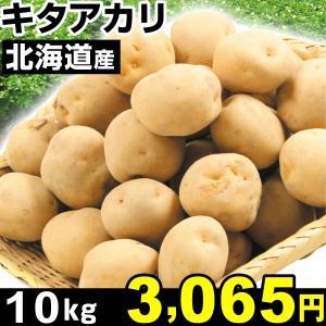 じゃがいも 北海道産 キタアカリ 10kg1組 食品|kokkaen