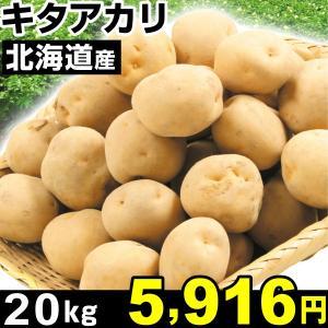 じゃがいも 北海道産 キタアカリ 20kg1組 食品|kokkaen