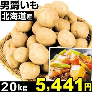 じゃがいも 北海道産 男爵いも 20kg1組 食品|kokkaen