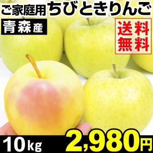 リンゴ 青森産 ちびとき 10kg 1箱 送料無料 ご家庭用 小玉りんご 希少りんご ときりんご【数量限定】|kokkaen