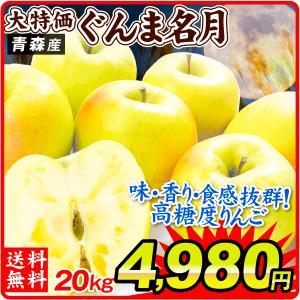 りんご 青森産 ぐんま名月 ご家庭用 木箱入り 20kg1箱 送料無料 【数量限定】【ただいま発送中】|kokkaen