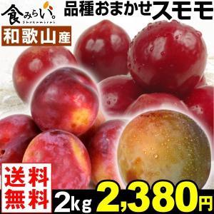 スモモ 和歌山産 おまかせスモモ 2kg 1組 送料無料 すもも プラム 西洋スモモ|kokkaen