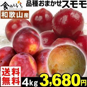 スモモ 和歌山産 おまかせスモモ 4kg 1組 送料無料 すもも プラム 西洋スモモ|kokkaen