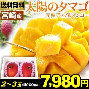 マンゴー 宮崎完熟マンゴー「太陽のタマゴ」 2〜3玉1箱 送料無料 秀品以上 高級マンゴーの代名詞 アップルマンゴー 宮崎ブランド 太陽のたまご|kokkaen